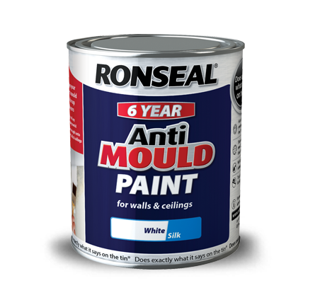 Removing Mould and Fungus for Painting