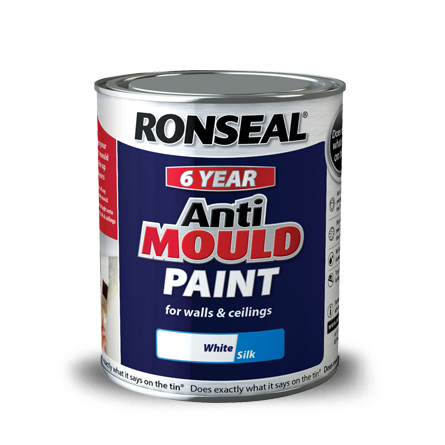 Treat Mould And Fungus Connacht Painting