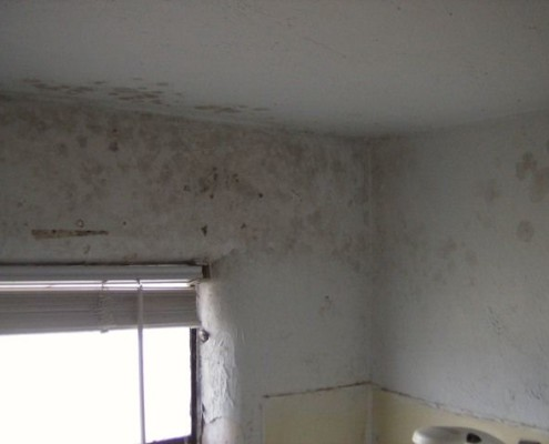 Bathroom, Removing Mould and Fungus for Painting