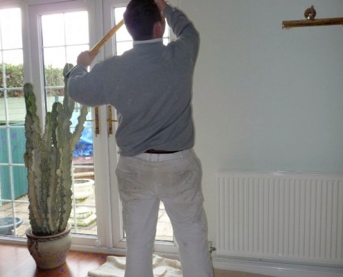 Professional Painter Decorator Mould Removal